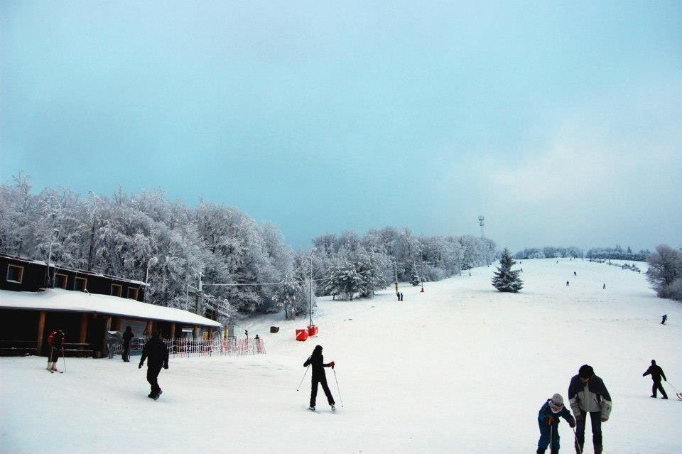 Homôlka
